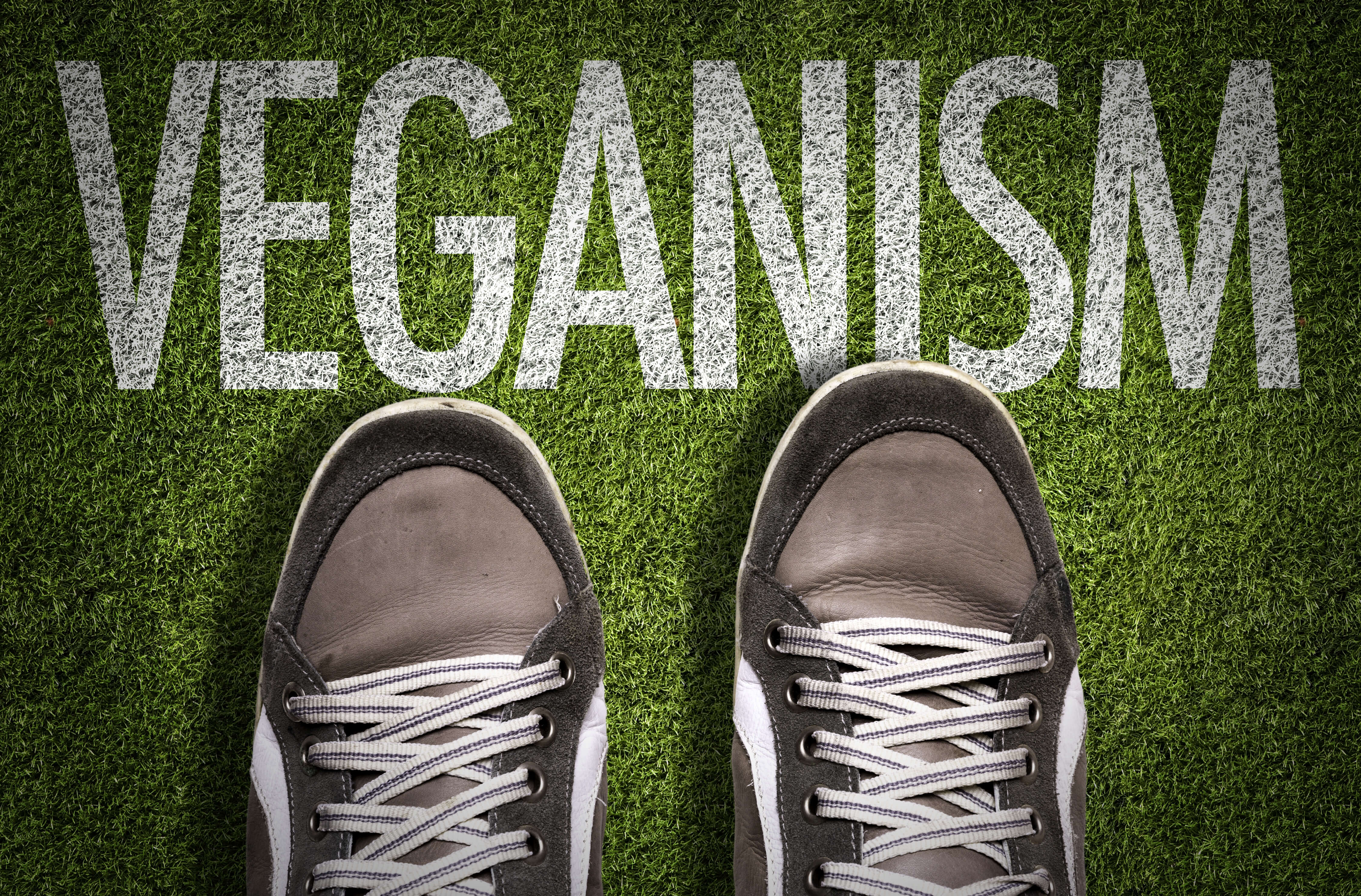Vegan shoes? But what does it actually mean?