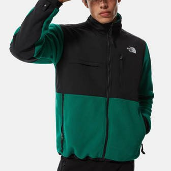 The North Face Denali 2 Jacket NF0A4QYJNL1