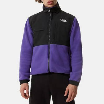 The North Face Denali 2 Jacket NF0A4QYJNL4