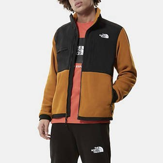 The North Face Denali 2 Jacket NF0A4QYJVC7